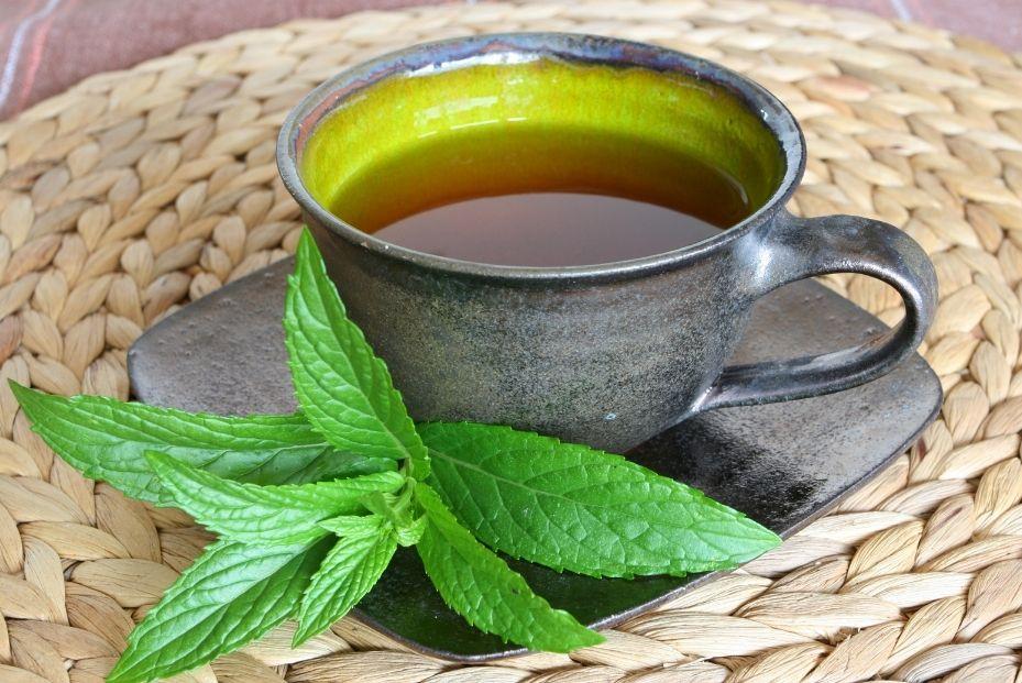 benefits of peppermint tea