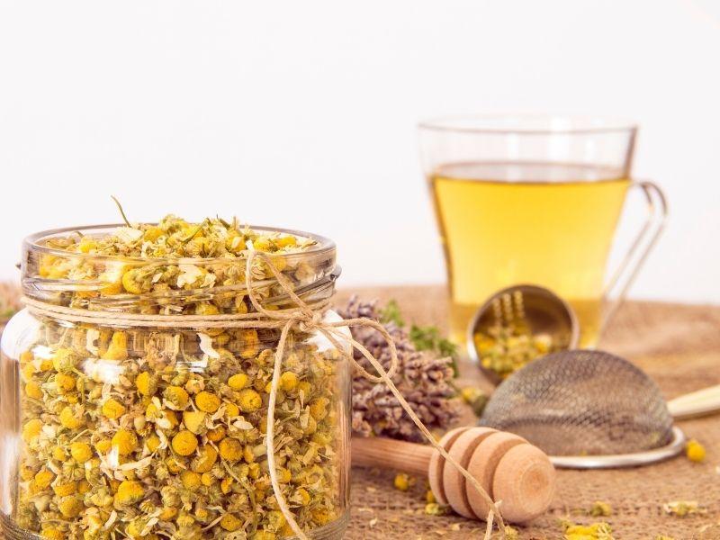 Effect of chamomile tea on kidneys