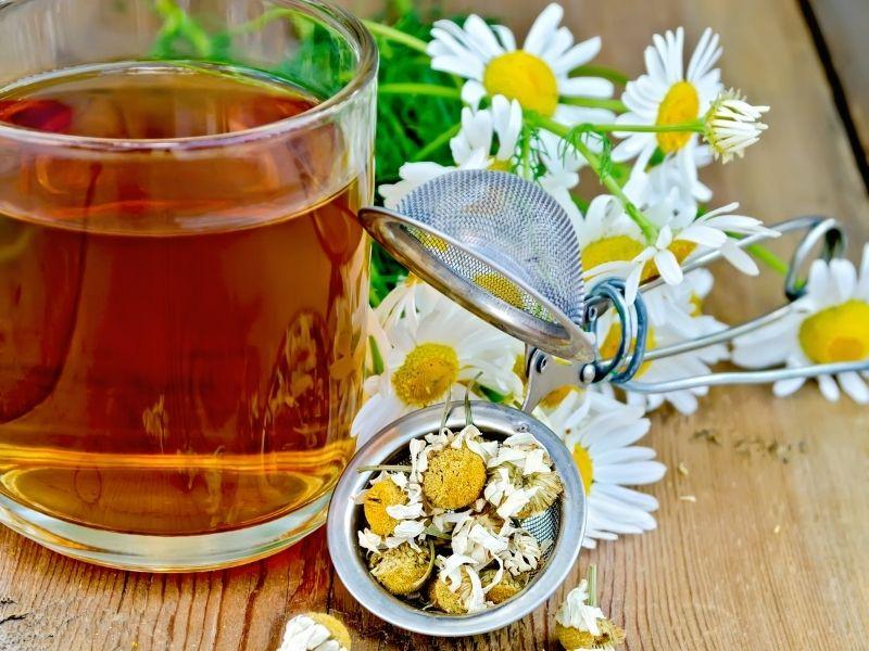 chamomile tea and kidneys